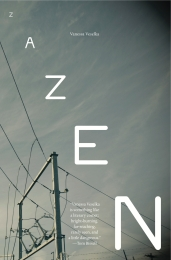 Cover of Zazen by Vanessa Veselka.