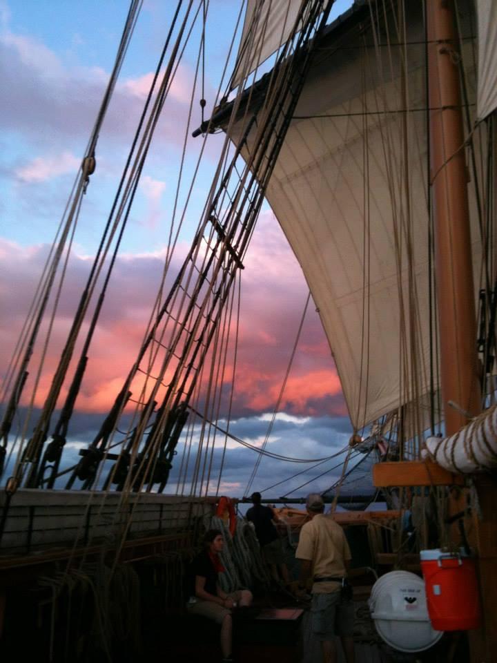 niagrara pink sail